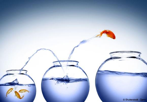 crowdfunding : un poisson rouge saute dans des bocaux de plus en plus gros