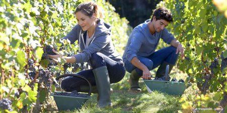 Travailleurs saisonniers : quelles règles pour l'employeur ?